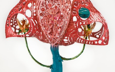 Pink Womanta Ray Light